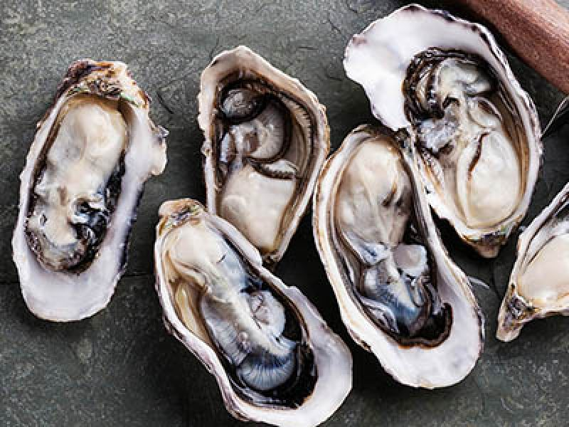 Huîtres Breuil, our range of quality oysters